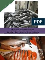 Agen Beli Mpasi Ikan Salmon 10 Bulan Frozen