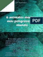 Carlos Michel Fumero - 6 animales marinos más peligrosos del mundo