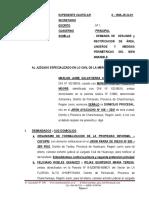 Demanda de Delimitacion de Linderos - Marlon Jaime Salvatierra Vargas 4