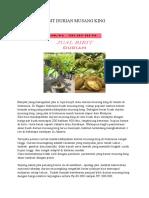 DISKON ..!HP/WA*0822-2022-8118, Jual bibit durian montong super Di tangerang selatan, Harga bibit durian 2 meter Di lebak
