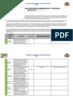 INFORME Políticas de Salvaguardas Ambientales y Sociales