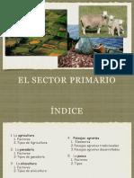 El Sector Primario. Agricultura y Ganadería