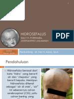 Hidrosefalus2.pptx