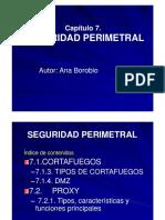 Presentacion Cap7-Seguridad Perimetral