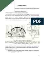 Mollusca.2015.pdf