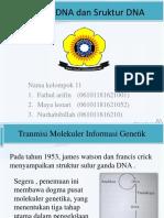 materi 1 kelompk 11.pptx