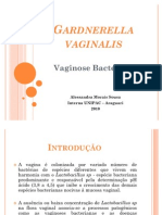 Vaginose Bacteriana - Gardnerella