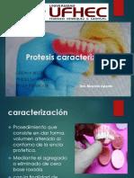 Protesis caracterizadas