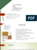 Biotecnologia de Fungos