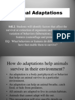 Animal Adaptations 4th Grade Tc