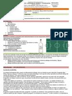 GUIA TALLER N 2-3 SIMETRIA.pdf
