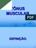 7. tnusmuscular-110908164634-phpapp01 1