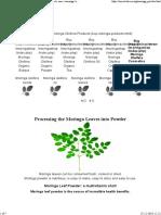 All About Moringa Tree