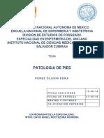 Patologia de Los Pies