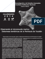 Calendario_2014_DiatomeasBentonicas
