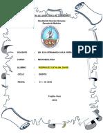 Caso Salmonella Typhi
