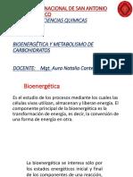 BIOENERGETICA[1]