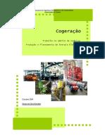 CogeracaoSergioBrandao.pdf