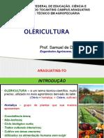 Aulas de Olericultura - Aula 1 (Conceitos Gerais, Cenoura, Alface e Coentro)