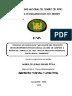 Rafael Avila.pdf