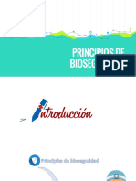 PRINCIPIOS-DE-BIOSEGURIDAD-DENNISE-Y-KIM-ALEXANDRA-joel.pptx