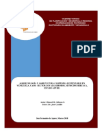 Tesis Doctoral Hazael Alfonzo.pdf