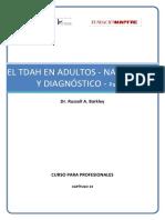 Conferencia 13 Tdah Adultos Naturaleza Diagnostico Parte I Tcm164 148617