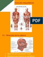 Tema 4 Miología 2ª parte.ppt