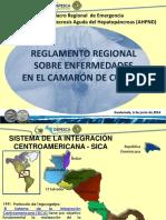 10. Reglamento Regional de Enfermedades de camarón - Reinaldo Morales.pdf