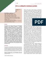 Bossuet Greif Et Al 2016 Molecular Microbiology