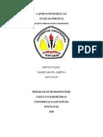 LAPORAN PENDAHULUAN PPI.docx