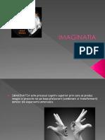 IMAGINATIA-Uta Diana Proiect
