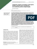 Analiza Filogenetica a Membrilor Genului Rickettsia Pe Baza Genei Omp