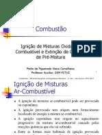 Combustão-Ignicao e Inflamabilidade.pdf
