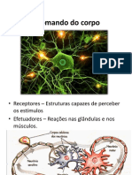 8º Anos - Ciências - Sistema Nervoso.pdf