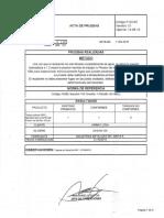 Acta de pruebas.pdf