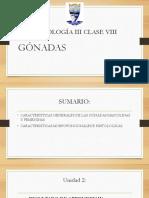 CLASE 8.GONADAS.pptx