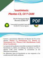 Plantasc3 c4 Cam