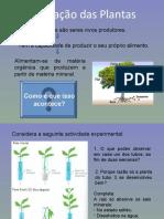 alimentação das plantas