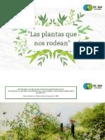 Dossier Las Plantas Que Nos Rodean