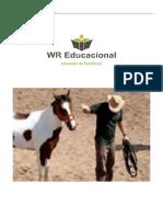 Interacao Do Homem Pantaneiro Com Seu Cavalo