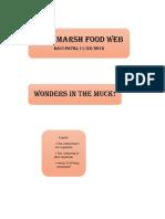 food chain .docx