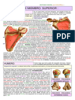 OSTEOLOGIA_DE_MIEMBRO_SUPERIOR.pdf (1).pdf
