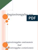 Angiostrongylus.ppt