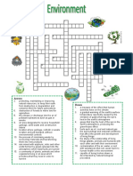 40545_environment__crossword_puzzle.doc