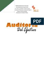 Informe Auditoria de Efectivo