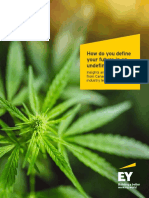 CANNABIS EYC REPORT