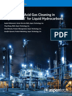 11-9029-WP-Validation Acid Gas Cleaning.pdf
