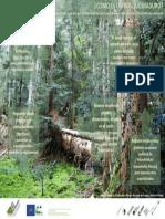 Como Son Los Bosques MadurosPOSTER v2 GrandeA2