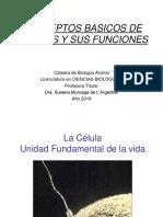 2.-Celula y Funciones Celulares-. Dra. Sml_a (2)
